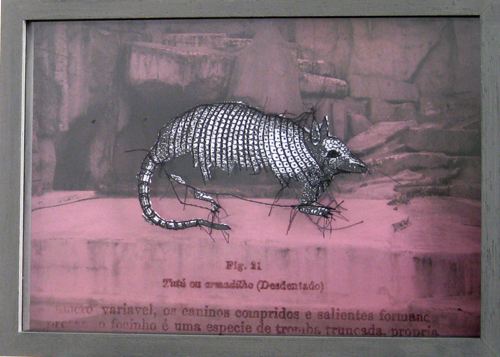 zoo-06-copy