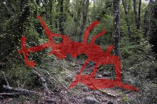 spuglia-nella-selva-antica2